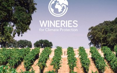 Dehesa de Luna ya es Wineries for Climate Protection