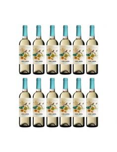 12 botellas sauvignon blanc